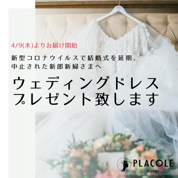 """新型コロナウイルスで結婚式を延期、中止された新郎新婦さまへ。4/9(木)よりプラコレが""""ウェディングドレス""""を無料でお届けします。"""
